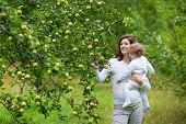 Young Beautiful Pregnant Mother And Her Baby Daughter Dressed In White Picking Apples In The Garden