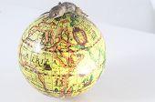Gecko Lizard and Globe