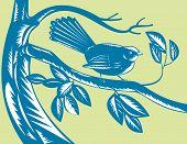 Fantail bird on branch