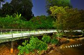 picture of greenery  - Night scenery of lighted walkway with greenery at Berlayer Creek - JPG