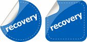 Stickers Label Set Business Tag With Recovery Word