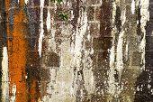 Cracked Stone Wall.