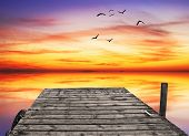 wooden pier in the sea of colors