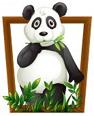 Illustration of a panda in a frame