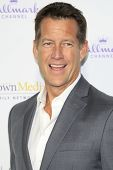 LOS ANGELES - JAN 8: James Denton at the TCA Winter 2015 Event For Hallmark Channel and Hallmark Movies & Mysteries at Tournament House on January 8, 2015 in Pasadena, CA