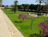 Central Larnaca, Cyprus