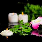 Spa Background Of Plumeria Flower, Green Branch Asparagus, Fern And Candles On Zen Basalt Stones Wit