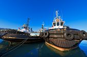 Three Tugboats In The Harbor