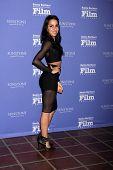 SANTA BARBARA - FEB 5:  Paola Baldion at the Santa Barbara International Film Festival - American Riviera Award at a Arlington Theater on February 5, 2015 in Santa Barbara, CA