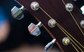 Acoustic Guitar Tuning Pegs