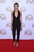 LOS ANGELES - JAN 24:  Katie Cassidy arrives to the 26th Annual Producers Guild Awards  on January 24, 2015 in Century City, CA