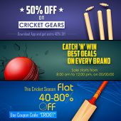 illustration of sale and promotion banner for cricket season