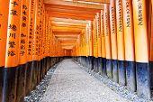image of inari  - Fushimi Inari Taisha Shrine in Kyoto - JPG