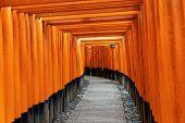 Fushimi Inari Taisha Shrine in Kyoto, Japan