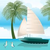 Sailboat gulls palm-trees sky and water