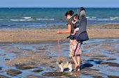 image of puppies mother dog  - Young mother carry her baby and walks her puppy dog on the beach - JPG