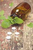 Lemon Balm. Bottle with tablets and herbal on wooden table