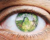 Closeup of human eye, macro mode with double exposure