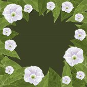 Floral Frame In The Shape Of A Circle. Vector Illustration