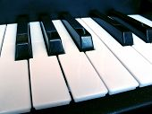 Piano Music Keys Isolated