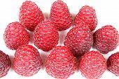 Raspberries In Group