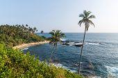 Beautiful Scenic View Of Coastline With Palm Trees, Sri Lanka, Mirissa poster