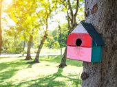 Colorful Bird Houses In The Park Hanging On A Tree, The Bird House Was Placed At Various Points.bird poster