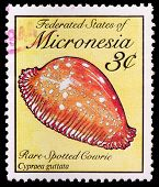 A 3-cent Stamp Printed In The Federated States Of Micronesia