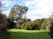 Melbourne Botanic Garden Lawn With Evening Shadows