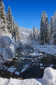 Winter Wonderland In The Bavarian Alps - Snowy River In The Forest poster