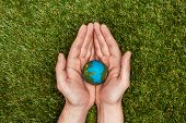 Cropped Image Of Man Holding Earth Model In Hands Above Green Grass, Earth Day Concept poster