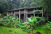 longhouse in borneo, traditional construction