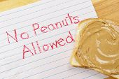 No Peanuts Allowed