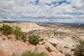 stock photo of denude  - The manifestation of denudation processes in paleodelte in Utah - JPG