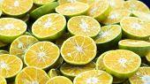 Sliced Orange Background . Colorful Orange Citrus Fruit Slices . Half Orange Fruit , Fresh And Juicy poster