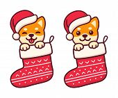 Cute Cartoon Shiba Inu Puppy In Santa Claus Hat Inside Hanging Christmas Stocking. Merry Christmas G poster