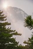 Vertical View Of The Peak Covered In Fog As Seen From The Trail To The North Peak Summit Of The Insp poster