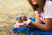 Woman Holding Pine Cone In Hand In Nature. Healthy People Lifestyle. Woman With Pine Cone In Hand. N poster