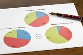 Expensive Gold Fountain Pen Pointing To Moderate Asset Allocation Pie Chart Among Other Choices For  poster