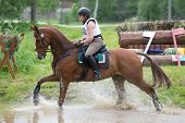 Eventer on horse is overcomes the Water jump