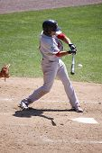 Portland Sea Dogs' Peter Hissey  swings at a pitch