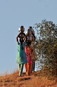 Indian Women Carrying Water To Village