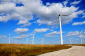 Green Renewable Energy Concept - Wind Generator Turbines In Field Blue Sky. Wind Green Environment E poster