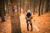 Touristic Sign Or Mark On Tree Next To Touristic Path With Female Tourist In Background. Nice Autumn poster