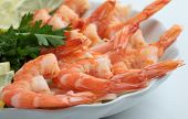 cooked shrimp with fresh herbs and lemon on a plate on a white background