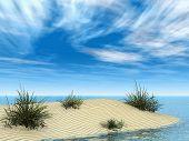 Small Sandbar With Grasses