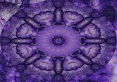 Púrpura Twirly