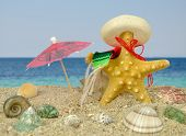 Starfish With Sombrero And Sun Umbrella