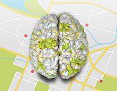 Mind Map Brain Top