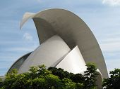 image of calatrava  - Photo of the congress building at Santa Cruz Tenerife build by Calatrava - JPG